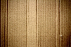 cardboard target