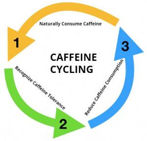 Caffeine Cycle