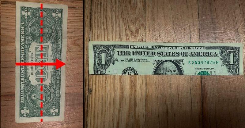 Dollar Bill Origami Elephant 1