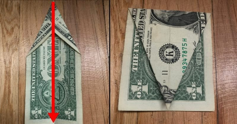 Dollar Bill Origami Elephant Folding Guide - The Daily Dabble | 420x800