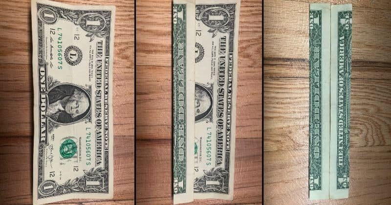 Dollar Bill Origami Pants 2