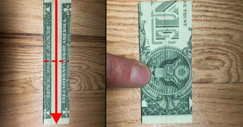 Dollar Bill Origami Pants 3