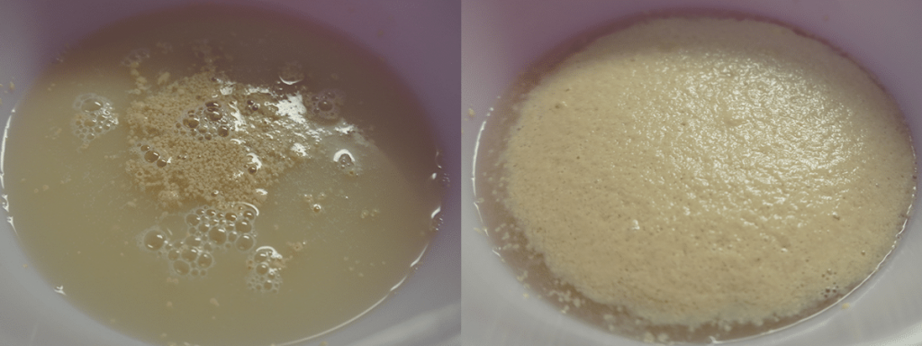 Poofing Yeast - Perfect Pizza Dough