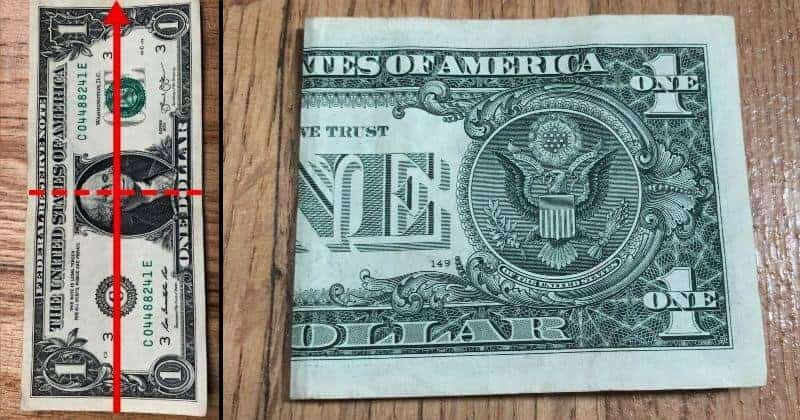 Dollar Bill Origami Frog Step 1