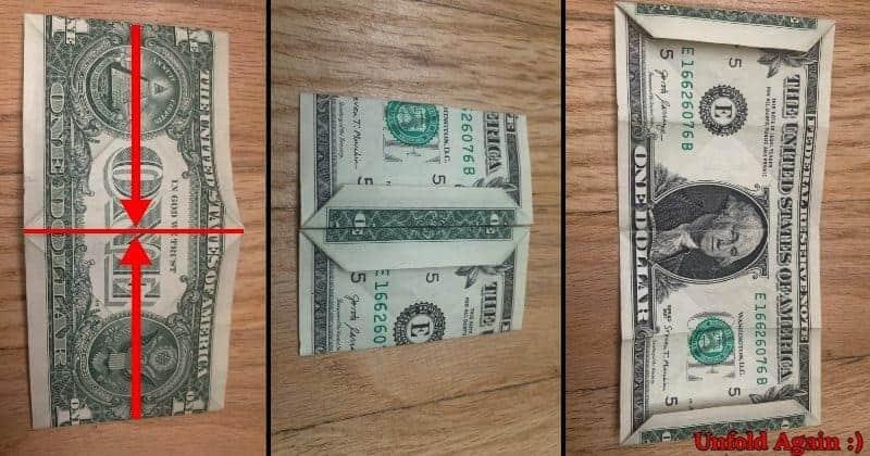 Dollar Bill Origami Frog Step 6