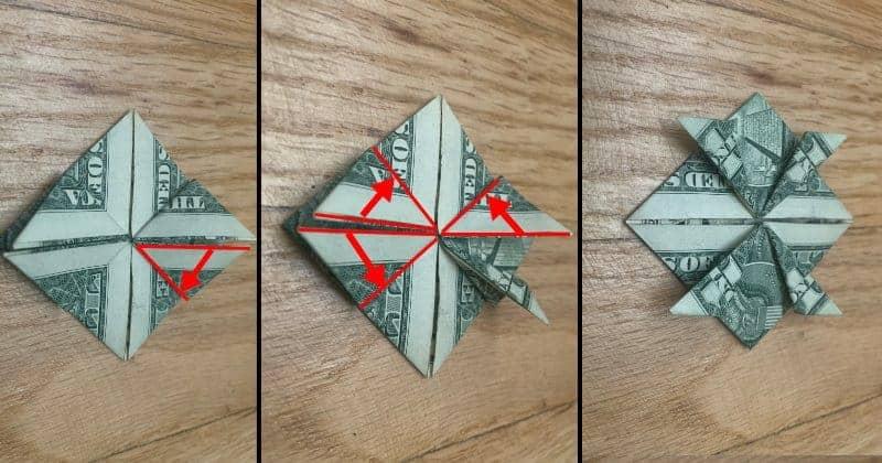 Dollar Bill Origami Frog Step 9