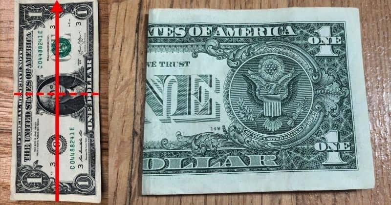 Dollar Bill Origami Butterfly 1