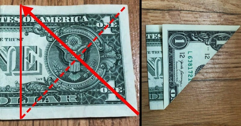 Dollar Bill Origami Butterfly 3