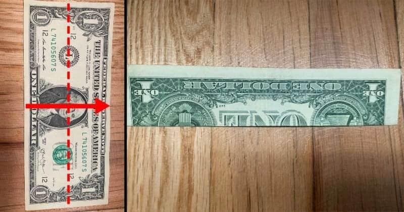 Dollar Origami Cat Step 1