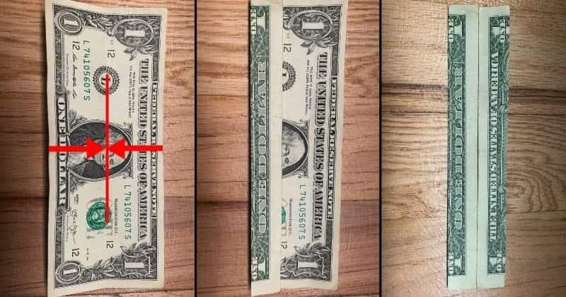 Dollar Bill Origami Cat Step 3