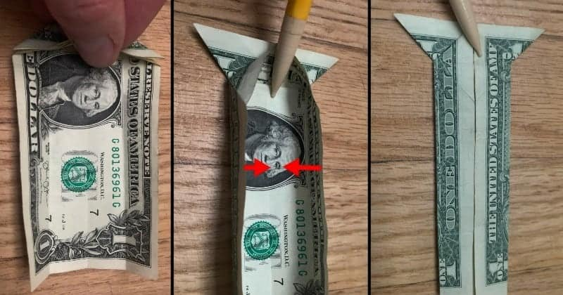 Dollar Bill Origami Cat Step 6