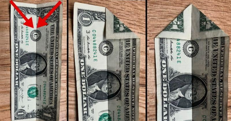 dollar bill origami tree 2