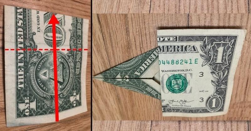 dollar bill origami tree 5