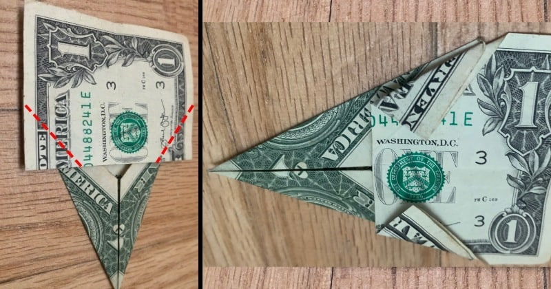 dollar bill origami tree 6