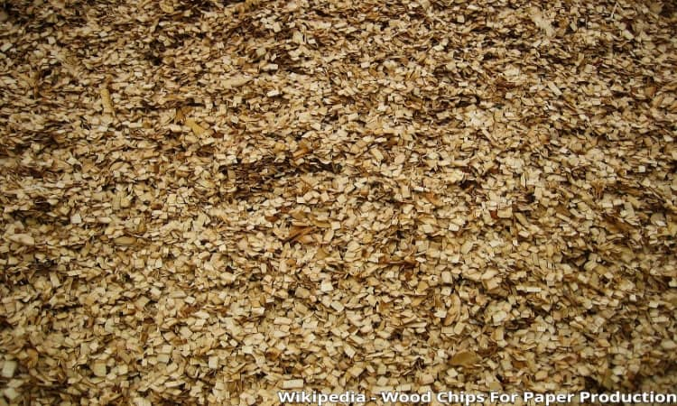 woodchips in paper production
