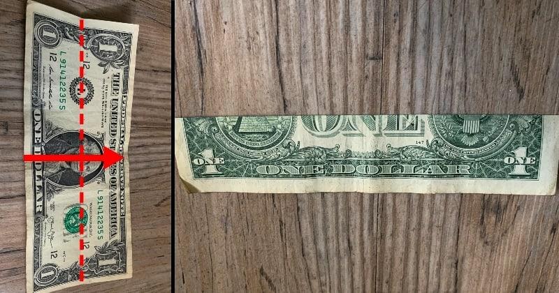 dollar bill origami flower 1