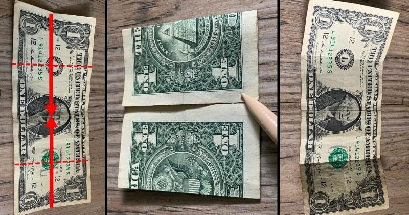dollar bill origami flower 2