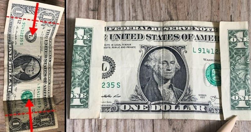 dollar bill origami flower 3