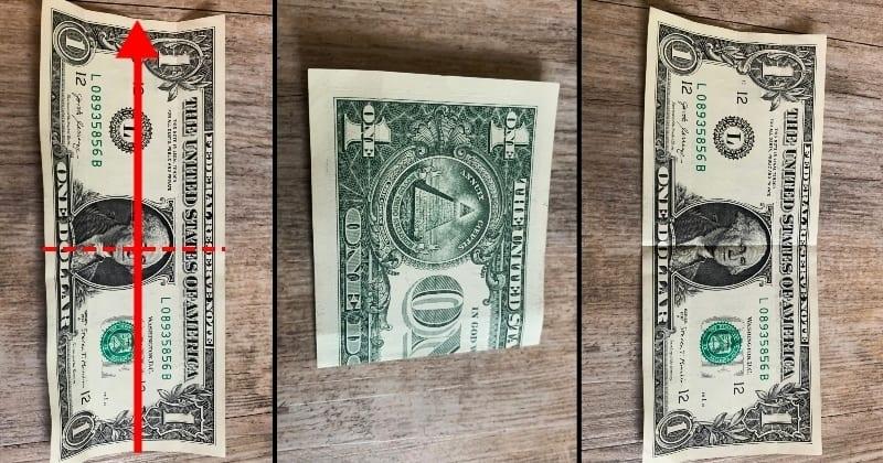 dollar bill origami rose 1