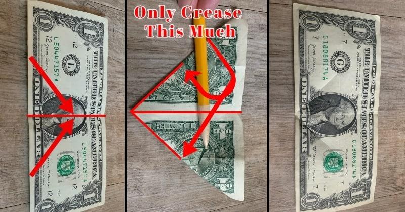 dollar bill origami rose 3