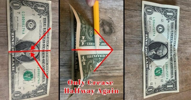 dollar bill origami rose 4a